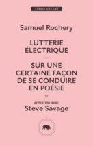 Samuel Rochery, Lutterie électrique