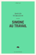 David Turgeon, Simone au travail