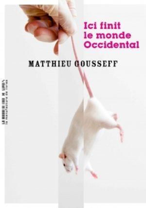 Matthieu Gousseff, Ici finit le monde occidental